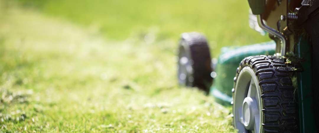 Lawn Mower Cutting Grass