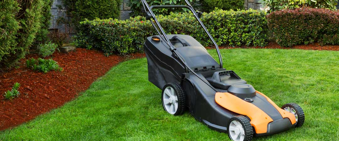Black and yellow battery powered lawn mower