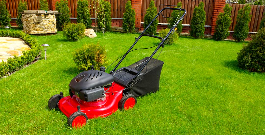 Gas lawn mower in backyard