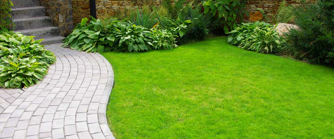 Lush green lawn along a brick path