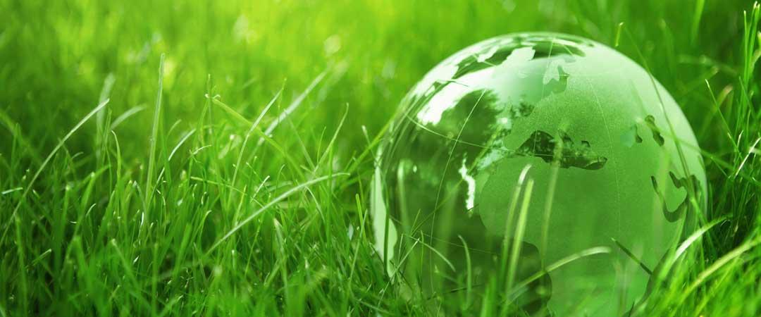 Crystal globe in green grass