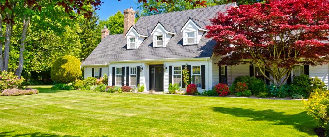 House with beautiful yard